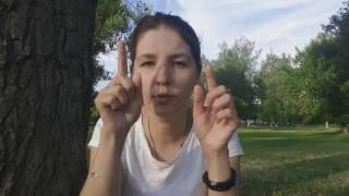 видео Нови-Сад