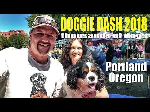 Portland Doggie Dash 2018   Oregon Humane Society   Travel Events