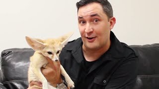 What scary animal will Jeff Musial show Steve? || STEVE HARVEY