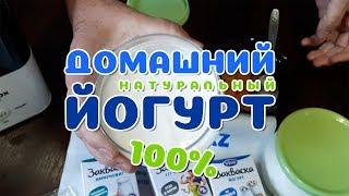 Как приготовить домашний йогурт! Из заквасок Vivo