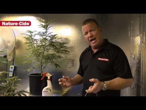 Nature-Cide Soil