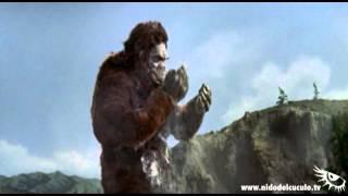 Nido del Cuculo - IO DOPPIO - Il trionfo di Kong - Kong vs Godzilla