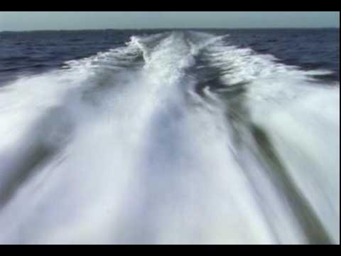 Marine Diesel Superchargers.mpg