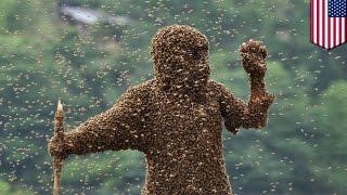 Водитель погиб, врезавшись в дом с дикими пчёлами