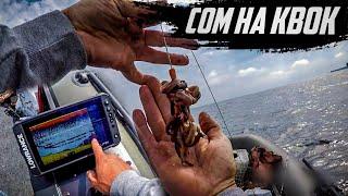 Ловля СОМА на КВОК 2021 Эхолот лоуренс ФС для ловли сома на квок Lowrance Elite FS 9 Сом CatFish