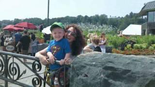 African Lion Safari and Niagara Falls