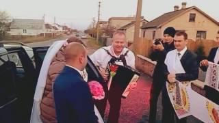 Виктор Заянчковский Встреча молодых Ведущий на свадьбу в Ивацевичах