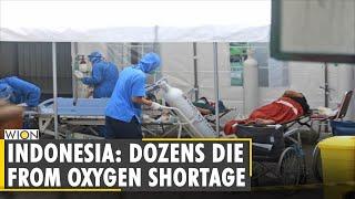 Indonesia Seeks More Oxygen For COVID-19 Patients Amid Shortage | Coronavirus | English World News