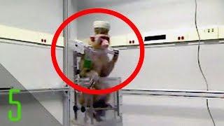 5 Animal Robot Hybrids