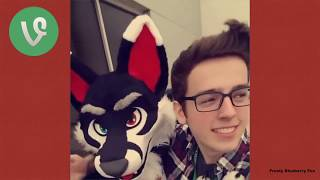 Furry Vine Compilation #1 100+ Vines 2017 Ft Fursuit Dancers, Telephone and More