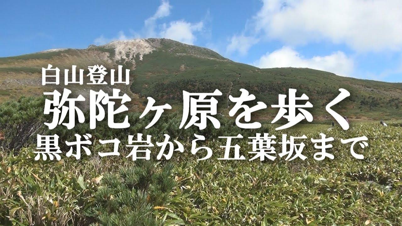 白山登山 弥陀ヶ原を歩く 黒ボコ岩から五葉坂まで 20170924