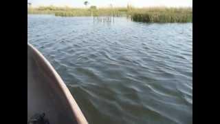 Voyage Botswana : Balade en mokoro sur le Delta de l'Okavango part 2