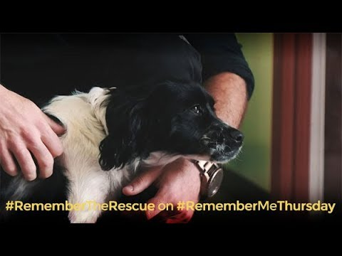 #RememberTheRescue on #RememberMeThursday