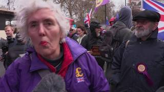 Marietta King UKIP Westminster March 2019