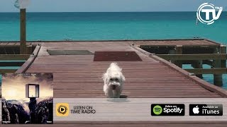 Axwell & Shapov - Belong (Aguelando Remix) Official Video  HD - Time Records