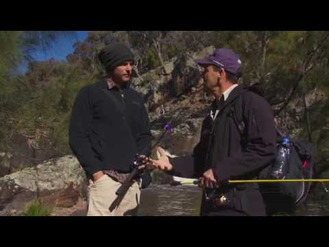 Fishing Australia Ep 23 2017 Carp Full Episode