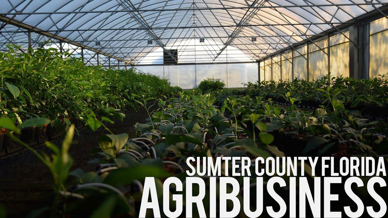 Sumter County Economic Development |