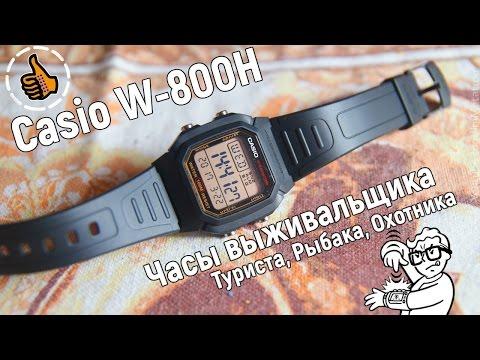 CASIO W-800HG Часы выживальщика - ОБЗОР