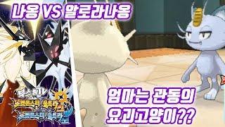 포켓몬스터 울트라 썬 문 공략 - 엄마는 관동의 요괴고양이?? (포켓몬스터 울트라썬문 공략 / Pokémon Ultra Sun·Moon)