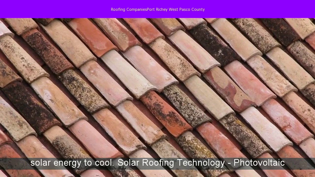 Roofing CompaniesPort Richey West Pasco County   YouTube
