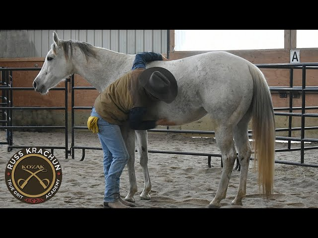 Discussion  Round Pen Methodology  Lesson 16 - Russ Krachun Kozak Horsemanship