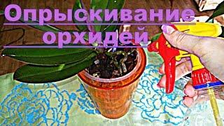 Опрыскивание орхидей с УКОРЕНИТЕЛЕМ(, 2016-06-04T17:14:35.000Z)
