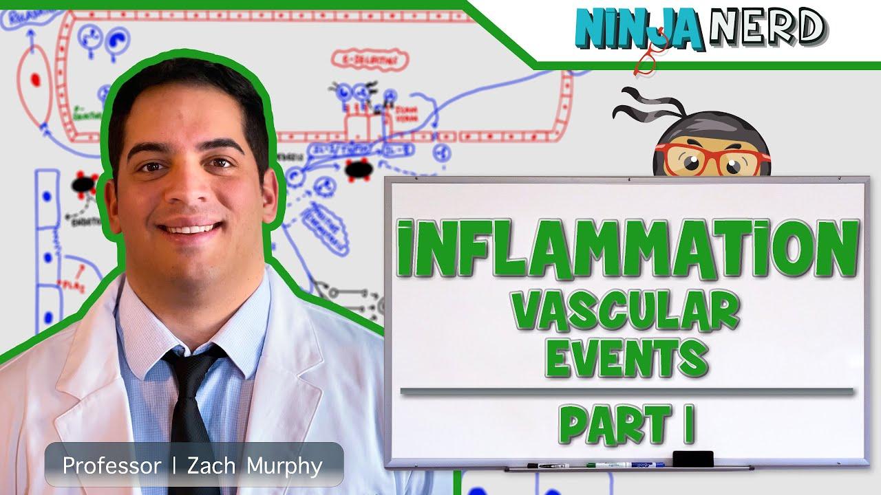 Immunology | Inflammation: Vascular Events | Part 1