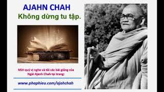 Không dừng tu tập - Ajahn Chah.