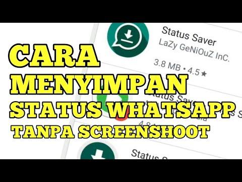 Cara Menyimpan Status WhatsApp Tanpa Screenshoot