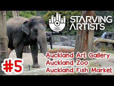 Auckland Art Gallery, Zoo & Fish Market in Auckland, NZ // Starving Artists Episode 5