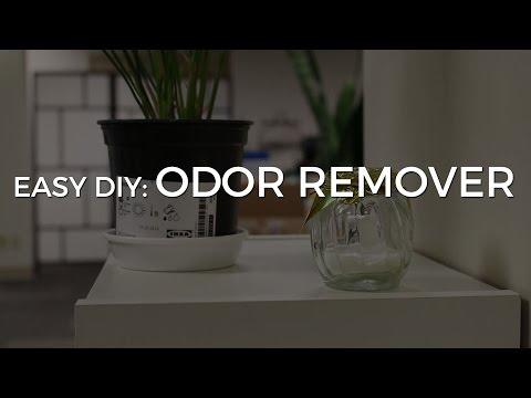 EASY DIY - Make Your Own Odor Remover