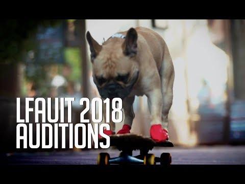 Lenny the bat dog  |  Auditions | France's got talent 2018