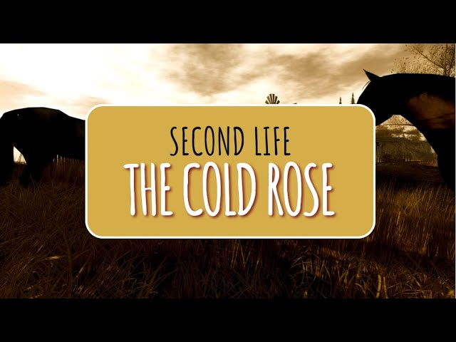 The Cold Rose in Second Life