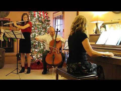 O Come, O Come, Emmanuel. (Cello/Flute/Piano)