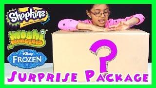 Disney Elsa Frozen Shopkins Moshi Monsters Transformers Giant Surprise Package - KidToyTesters