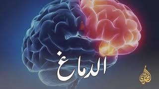 الإعجاز العلمي في الدماغ ؛واين تقع الناصية ...؟؟ درس رائع لفضيله الدكتور محمد راتب النابلسي