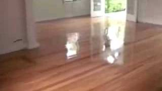 Luxury Wood Flooring:Ernest Hemingway Home
