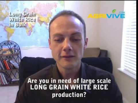 companies,-international-white-rice-trading-company,-united-states-bulk-white-rice-wholesale