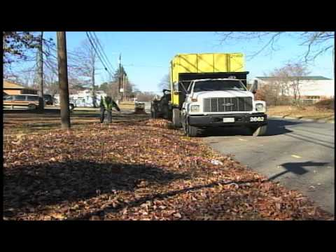 The City of Greensboro's Loose Leaf Collection Program