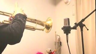 【トランペット】情熱大陸_Trumpet【吹いてみた】