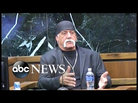 WWE Star Hulk Hogan Sues Gawker AGAIN