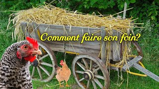 Comment faire son foin. Poules, hamsters, lapins. Litière. Composte.