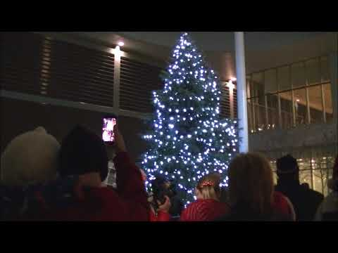 Bradford West Gwillimbury Tree Lighting 2016