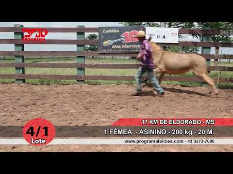 LOTE 04 1