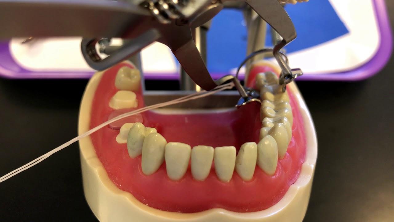 Download Dental Dam