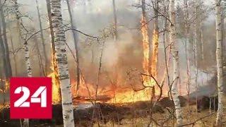 Иркутская область находится на первом месте по количеству очагов возгорания - Россия 24