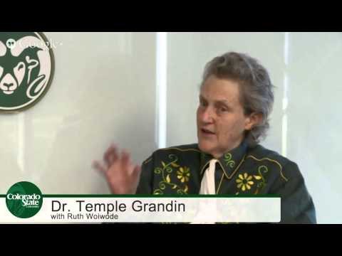 Temple Grandin Interview   3 types of minds: visual, pattern and facts thinkers