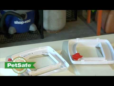 PetSafe 4 Way Locking Cat Door Installation and Training