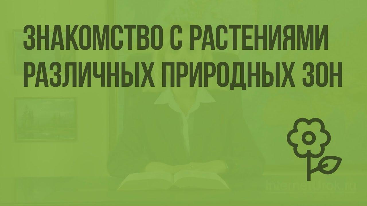 Города́-миллионе́ры — категория городов на территории Российской Федерации.