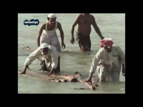 Kuwait Folklore - Kuwaiti traditional music - English documentary 1973